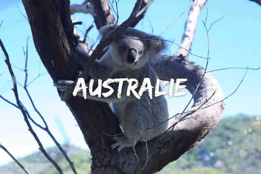 blog de voyage région de Queensland en australie